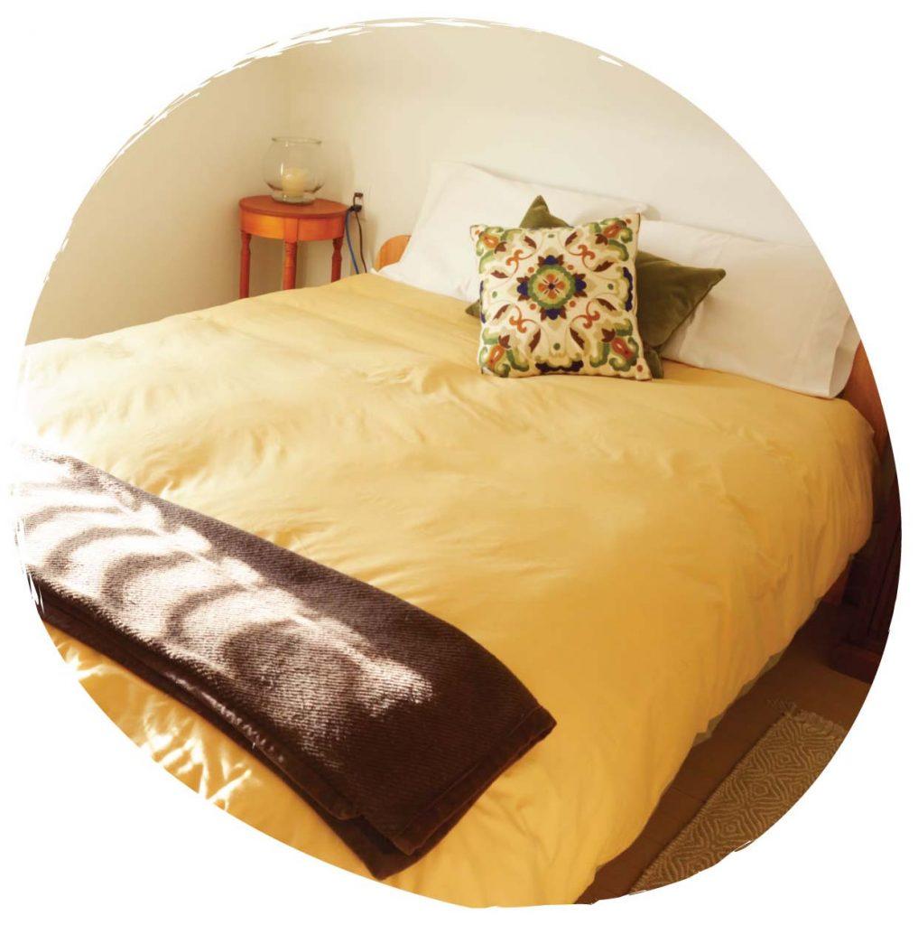 The Sage Room at Sky Story Bed & Breakfast near Grasslands National Park